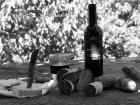 thumbs vino e formaggio sw  214 Mountainzones in Schwarz und Weiss