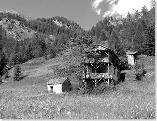 Fusio-Holzhaus